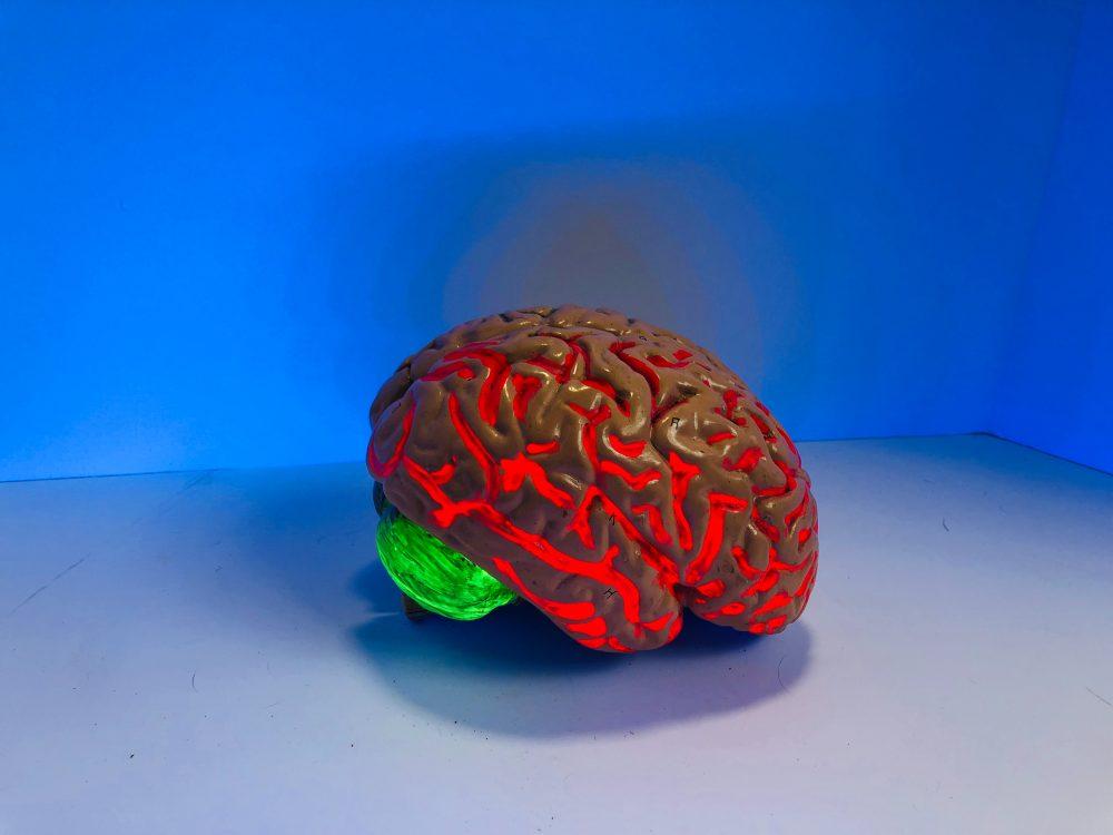 4 consejos para mantener tu cerebro en forma